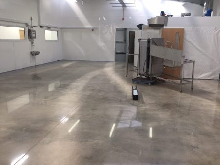 Polished Concrete Floors Wesley Chapel, Florida