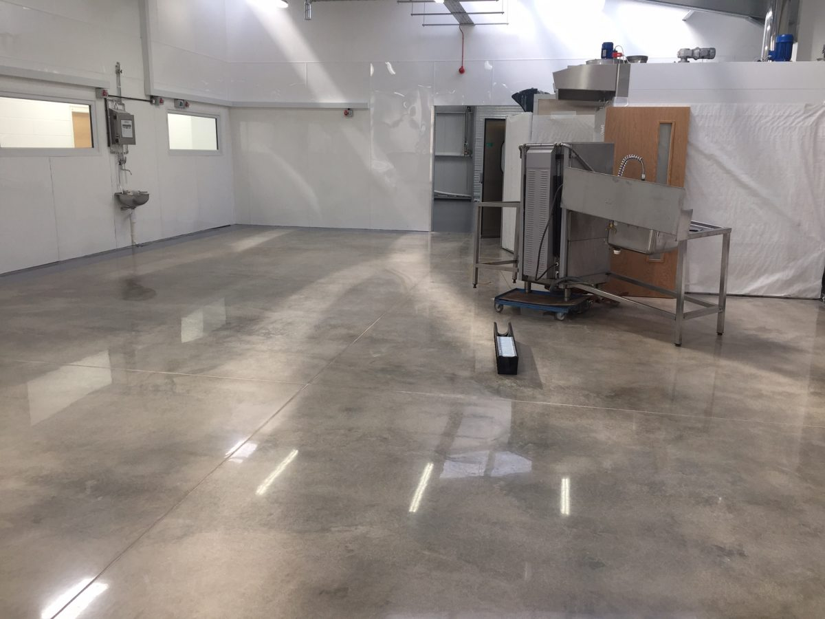 Polished Concrete Floors Tampa Florida Polishing