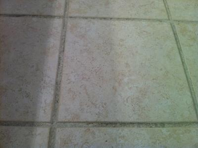 Ceramic Tile and Grout After Cleaning Before Colorsealing